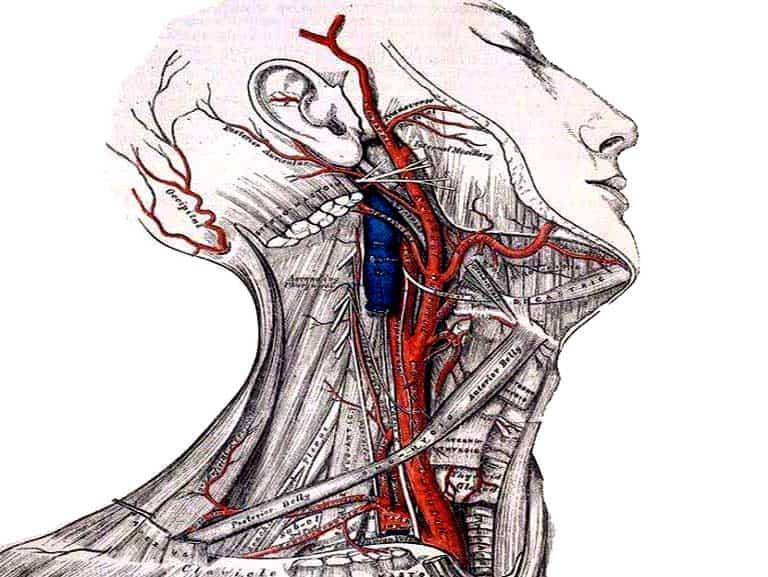 מניפולציה לצוואר זה בטוח