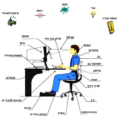 עמדת מחשב ארגונומית לגב בריא