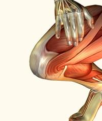כאבים בברך גורמים
