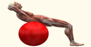 חיזוק שרירי הליבה לגב בריא