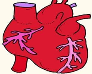 דאגה לבריאות גורמת לבעיות בריאות