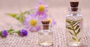 צמחי מרפא לטיפול בדלקות פרקים