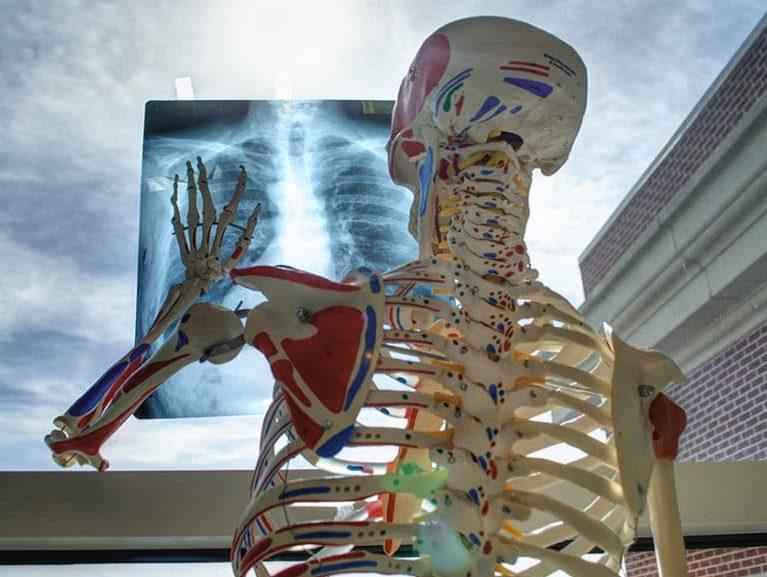 בדיקה של עמוד השדרה הצווארי