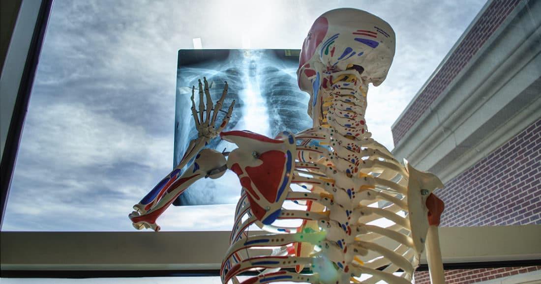 עמוד שדרה צווארי בדיקה