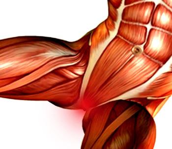 כאבי סימפיזיס פוביס אבחון וטיפול