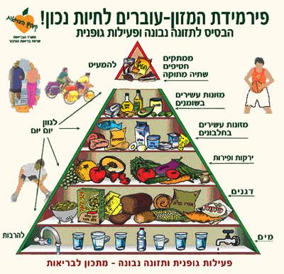 תזונה ובריאות והקשר ביניהם - פירמידת מזון