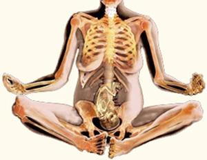 כאבי גב תחתון בהריון טיפול