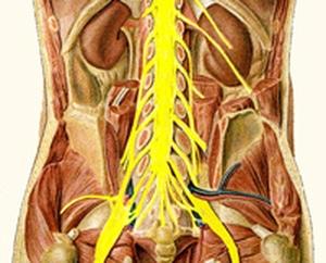 פציעה של חוט השדרה