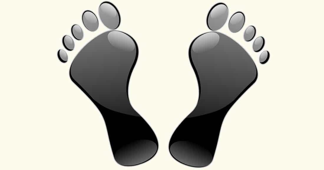 מבנה כף הרגל - אנטומיה וביומכניקה הם תחומי ידע קריטיים עבור קלינאי המטפל בדלקות, פגיעות או כאבים בכף הרגל. תחומי ידע אלו עשויים להועיל בהבנת הגורמים האפשריים להתפתחות סימנים ותסמינים בחלק אנטומי זה. על כפות הרגליים מוטלים עומסים נייחים ודינאמיים עצומים. כדי לעמוד בעומסים הללו דרושים לכף הרגל מבנה חזק וביומכניקה תקינה.